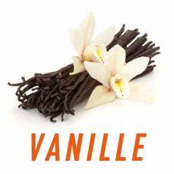 e-liquide-bio-vanille