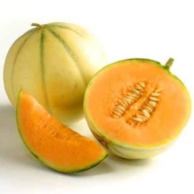 eliquide-bio-melon