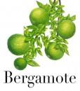 eliquide-bergamote