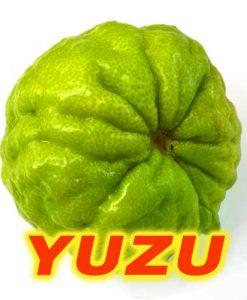 eliquide-yuzu