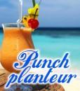 eliquide-bio-punch-planteur