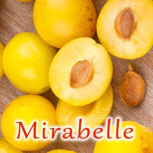 eliquide-bio-mirabelle
