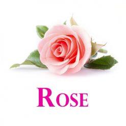 eliquide-bio-rose